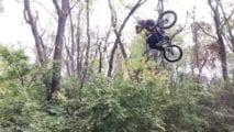 Woods Wedneday-VOL. 1